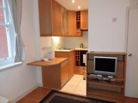 Hammersmith - Comfortable, Bright Studio Flat to Rent //