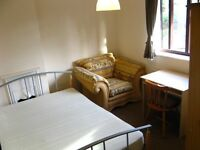 Great single room with double bed to rent in a tidy house with kept garden