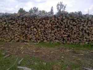 Top Quality Firewood for Sale Kitchener / Waterloo Kitchener Area image 2
