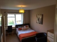 Beautiful Large Double Room with Large En-suite in Shared House £150w all bills included