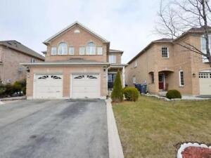 Beautiful Renovated 3 Brm Semi Detach In Brampton