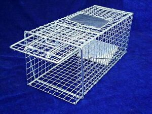 TRAP-Humane-Possum-Cat-rat-Rabbit-Hare-Bird-Fox-Animal-wire-cage-live-foldable