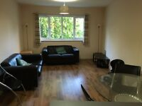 Stylish and spacios One Bedroom flat in perfect location**