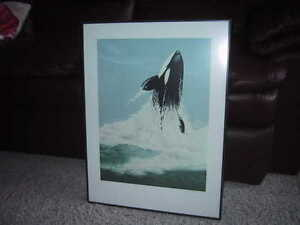 Hand signed, limited edition Jack Grundle 'Killer Whale""