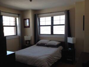 Fantastic 1 Bedroom   AVAILABLE DEC 1ST