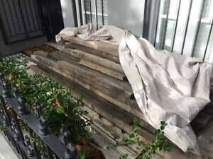 Iron bark roof rafters Woollahra Eastern Suburbs Preview