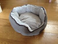 Wainwright's Scallop Bed for small dog or cat