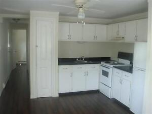 Cozy two bedroom trailer home on Hussey Drive