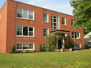 1 bdrm lower suite in quiet East end building-$875+Electricity