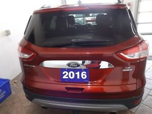 2016 Ford Escape SE Kitchener / Waterloo Kitchener Area image 4