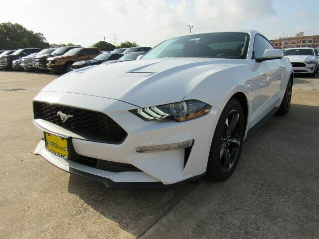 2019 Ford Mustang EcoBoost 2749 Miles Oxford White 2dr Car Intercooled Turbo Pre