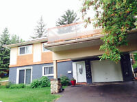 4 bedroom Executive family//Income  Suited 1/4 Acre Inner City