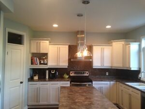 White Kitchen Cabinets with Appliances - wooden cabinets