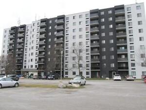 2 bedrooms for the price of 1! PLUS ONE MONTH FREE! Kitchener / Waterloo Kitchener Area image 2