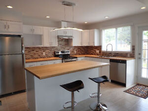 Don't Miss Out! Newly Renovated 5 Level with over 3000sqft