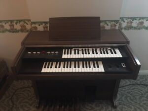 Starter organ for the musically inclined!