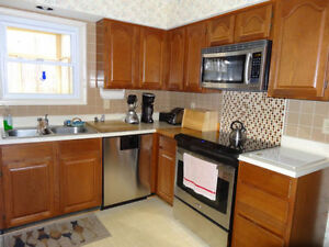Professional Cleaning Service Windsor Region Ontario image 5