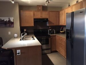 Okotoks Mesa Condo 2 bedroom/2 bath - furnished