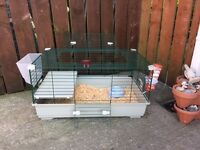 Indoor rabbit cage , Guinea pig with extras