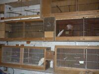 Budgie breeding cages and other accessories
