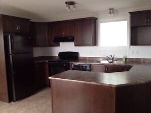 2Rooms for rent in Sunnyside home 5 mins to Bull Arm(Hebron