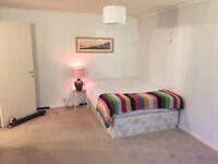 Huge Double Room in Bethnal Green - great location!
