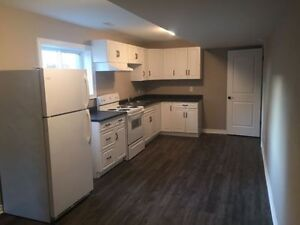 High End, 2 Bedroom Walk Out Apartment Utilities Included