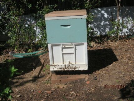 bee hive for sale