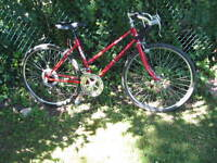 Girls classic 12 spd road racer-24 inch tires
