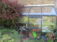 OLD LEAN-TO GREENHOUSE/GLASSHOUSE made by HALLS