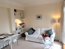 Fantastic Art Deco 9th Floor apartment in Marsham Court Westminster