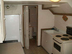 One Bedroom Basement Suite for Rent in Riverdale