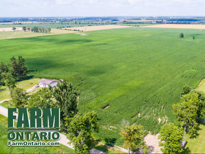High Yielding Systematically Tiled Farm with 5 Bdrm in Milverton