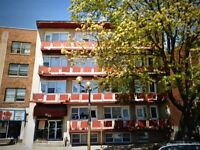 NDG - 3 1/2 FOR RENT - RENOVATED, HEATED