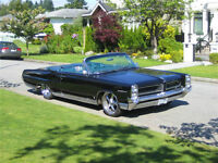 Beautiful Convertible Cruiser for sale