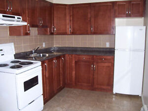 LARGE BACHELOR SUITE*CLOSE TO UNIVERSITY,HOSPITAL,WHYTE AVE&MORE