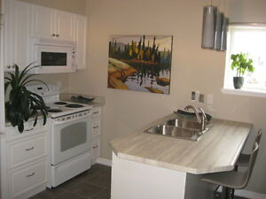 HEART OF DOWNTOWN! ALL NEW RENO! UPSCALE 1 BEDROOM APT!