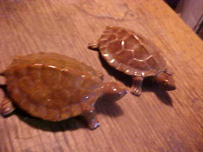 OLD PAIR TURTLES ANATOMICALLY CORRECT MALE FEMALE FIGURINES
