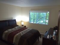 !!  Two Bedroom Apartment w/balcony in Clayton Park  !!