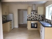 2 bed newly decorated apartment to rent