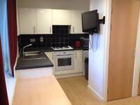 Private Studio Flat available for students! Only 5 minute walk to Edinburgh University