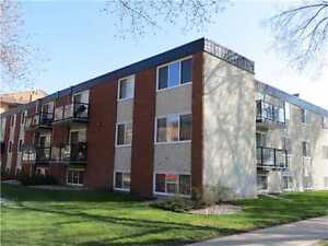 RENOVATED 2-BEDROOM CONDO W/ DEDICATED PARKING IN BOYLE STREET