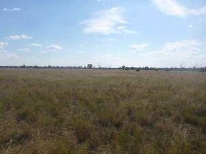 40 Acre Hobby Farm with building permission for Sale Gulargambone Coonamble Area Preview