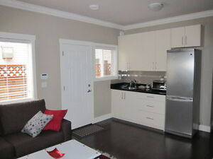 550sft - Furnished 1 Bdr. - short term available Apr 1st