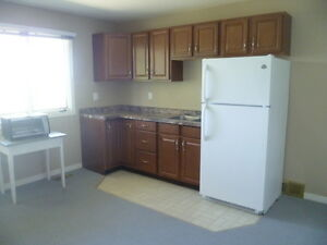 One Bedroom Alberta Apartment Available May 1st