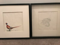 2 paintings - Highland Cow & Pheasant £15 each