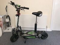 Electric adult scooter
