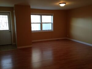 Large, Bright Downtown Apartment for rent