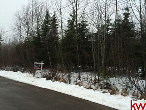 Private 1 Acre Lot Only 10 minutes From Moncton! Pine Point Dr.