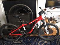 """Specialized Hotrock 20"""" Wheel Kids Bike"""
